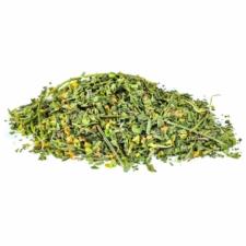 Skullcap (Scutellaria lateriflora) Certified Organic