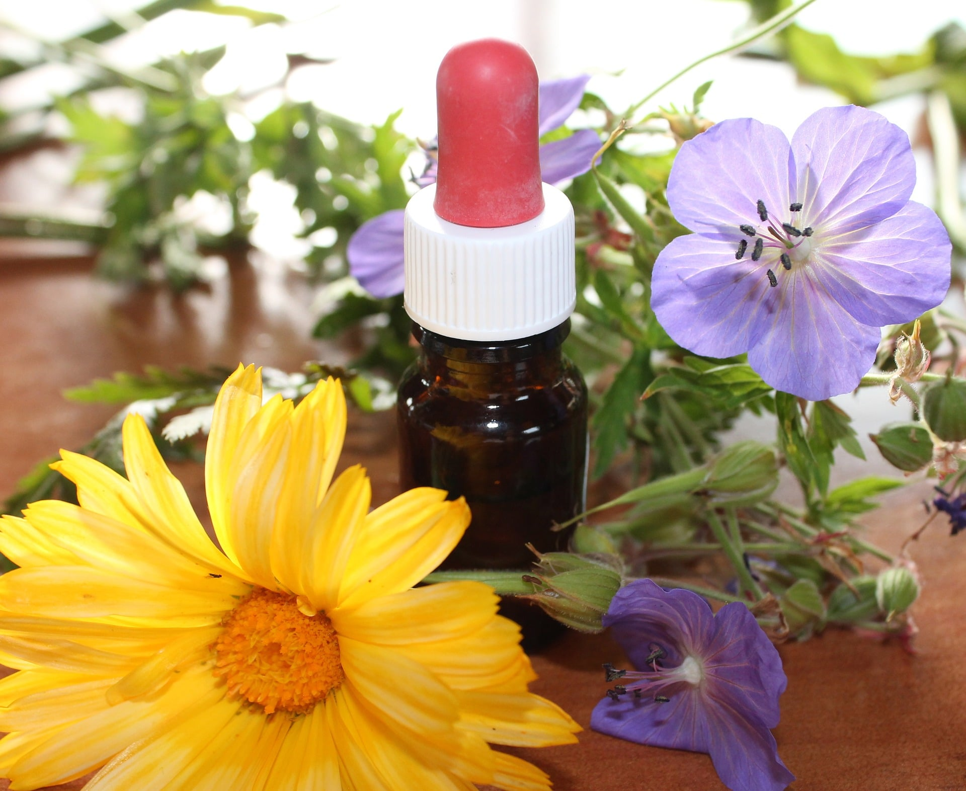 how to make plant tinctures